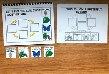 Butterfly Life Cycle Sequencing Activities