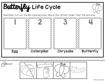 Butterfly Life Cycle {FREE Sequencing Activities}