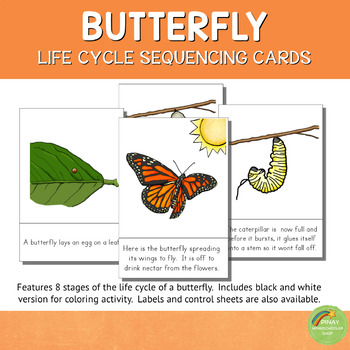 Butterfly Life Cycle Sequencing Cards and Posters