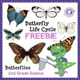 FREE Butterfly Life Cycle - BLACK AND WHITE Sequencing Cards
