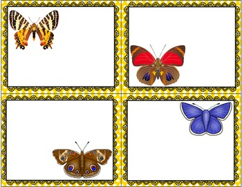 Butterfly Life-Cycle Sorting Cards