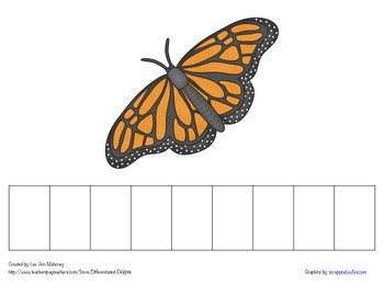 Butterfly Life Cycle Spelling