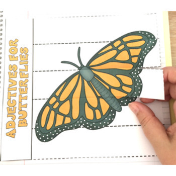 Butterfly Life Cycle Activities Flip Books Word Walls Sequencing Spinners