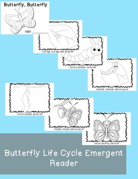 Butterfly Life Cycle Super Bundle