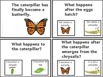 Butterfly Life Cycle Task Card Set