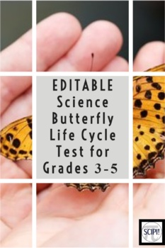 EDITABLE Science Butterfly Life Cycle Test for Grades 3-5