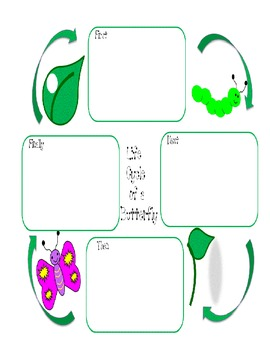 Butterfly Life Cycle Text and Diagram