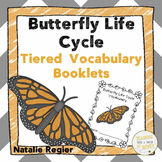 Vocabulary Activities - Butterfly Life Cycle
