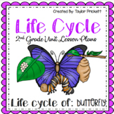 Butterfly Life Cycle Unit (Lesson Plans and Activities)