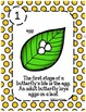 Butterfly Life Cycle Unit - Posters, Printables, 5-Page Tab Book
