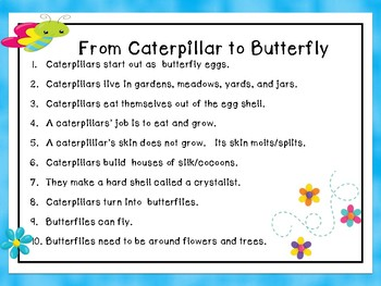 Spring Life Cycles Butterflies
