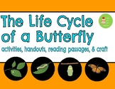 Butterfly Life Cycle Unit ~ Reading Comprehension Passage