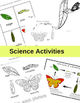 Butterfly Life Cycle Unit for PreK-1st Grade - Cross Curricular