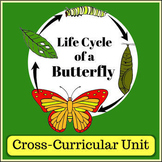 Butterfly Life Cycle Unit - Cross Curricular