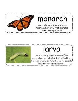 Butterfly Life Cycle Vocabulary Cards