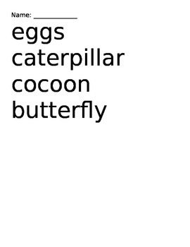 Butterfly Life Cycle Vocabulary Match