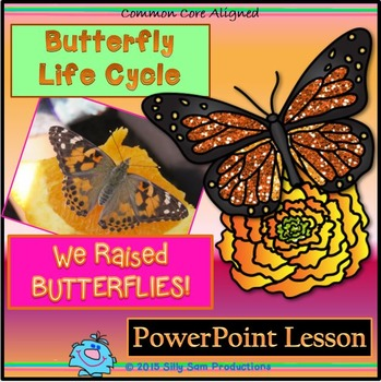 Butterfly Life Cycle: We Raised Butterflies! PowerPoint Lesson