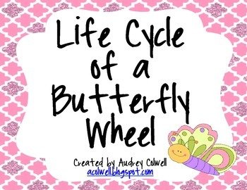 Butterfly Life Cycle Wheel Printable