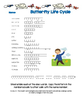Butterfly Life Cycle Word Scramble