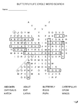 Butterfly Life Cycle Word Search!