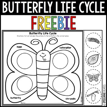 photo regarding Butterfly Life Cycle Printable named Butterfly Existence Cycle Worksheet FREEBIE