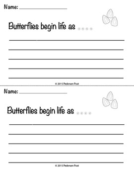 Butterfly Life Cycle Writing Prompts