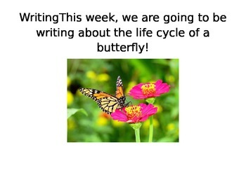 Butterfly Life Cycle Writing Unit Slides