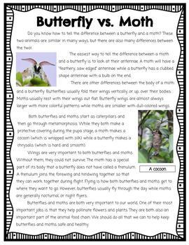 Butterfly Life Cycle and Adaptations Unit