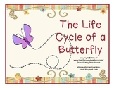 Butterfly Life Cycle for Early Elementary