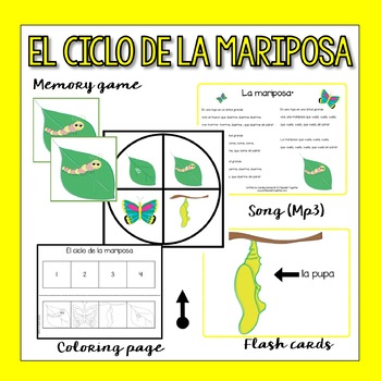Spanish Butterfly Life Cycle (Flashcards, song & more)