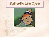 Butterfly Life Cycle with Labeled Pictures