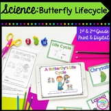 Butterfly Lifecycle- 1st & 2nd Grade