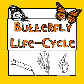 Butterfly Lifecycle - Growth, Changes and Metamorphosis