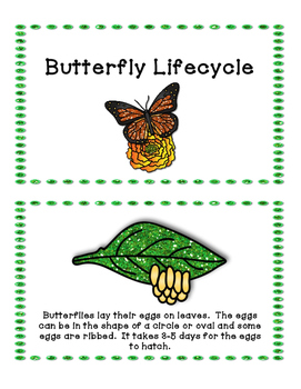 Butterfly Lifecycle Activities - Science & Reading