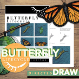 Butterfly Life Cycle Activity Directed Drawings Digital Learning