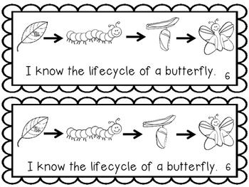 Butterfly Lifecycle ~ Emergent Reader