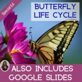 Butterfly Life Cycle Unit for Special Education