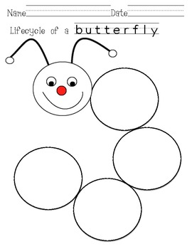 Butterfly Lifecycle sequence and chart