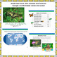 Butterfly Lifecycle, nonfiction, digital, ebook, printable, text features