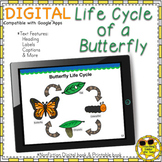 Butterfly Life Cycle Book Digital Nonfiction Google Activi