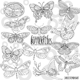 Spring Butterfly Doodle Line Art - Black and White PNG Clipart Outlines