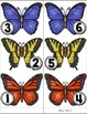 Spring Measuring -- How Many Butterflies Tall Are You? --