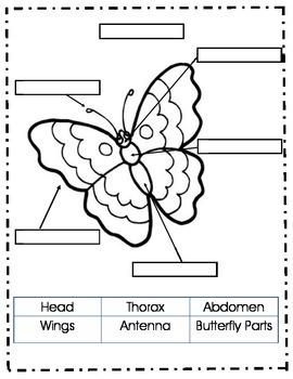 Butterfly Mini Unit