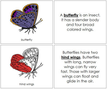 Butterfly Nomenclature Book (Red)