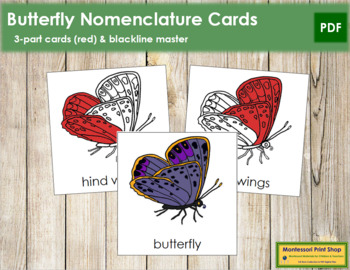 Butterfly Nomenclature Cards (Red)