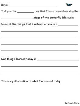 Butterfly Observation/ Learning Log