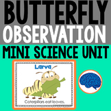 Butterfly Observation : Metamorphosis Investigation