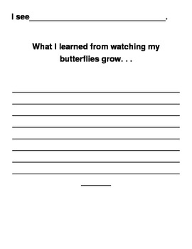 Butterfly Observation Packet- Life cycle