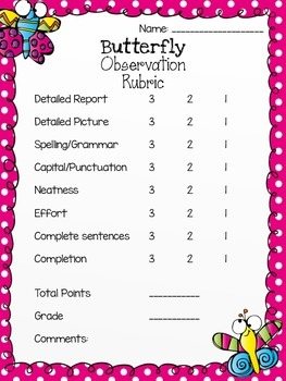 Butterfly Observation Rubric