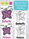 Butterfly Parts of the Body - Partes de La Mariposa